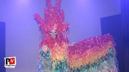 Spettacolo di Sandra Show alla Star Night del Baraonda Disco Club