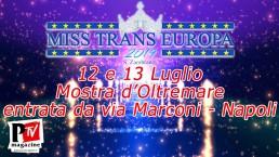 Miss Trans Europa 2019: 12 e 13 Luglio alla Mostra d'Oltremare
