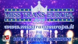 Le vincitrici del Miss Trans Europa dal 2013 ad oggi...